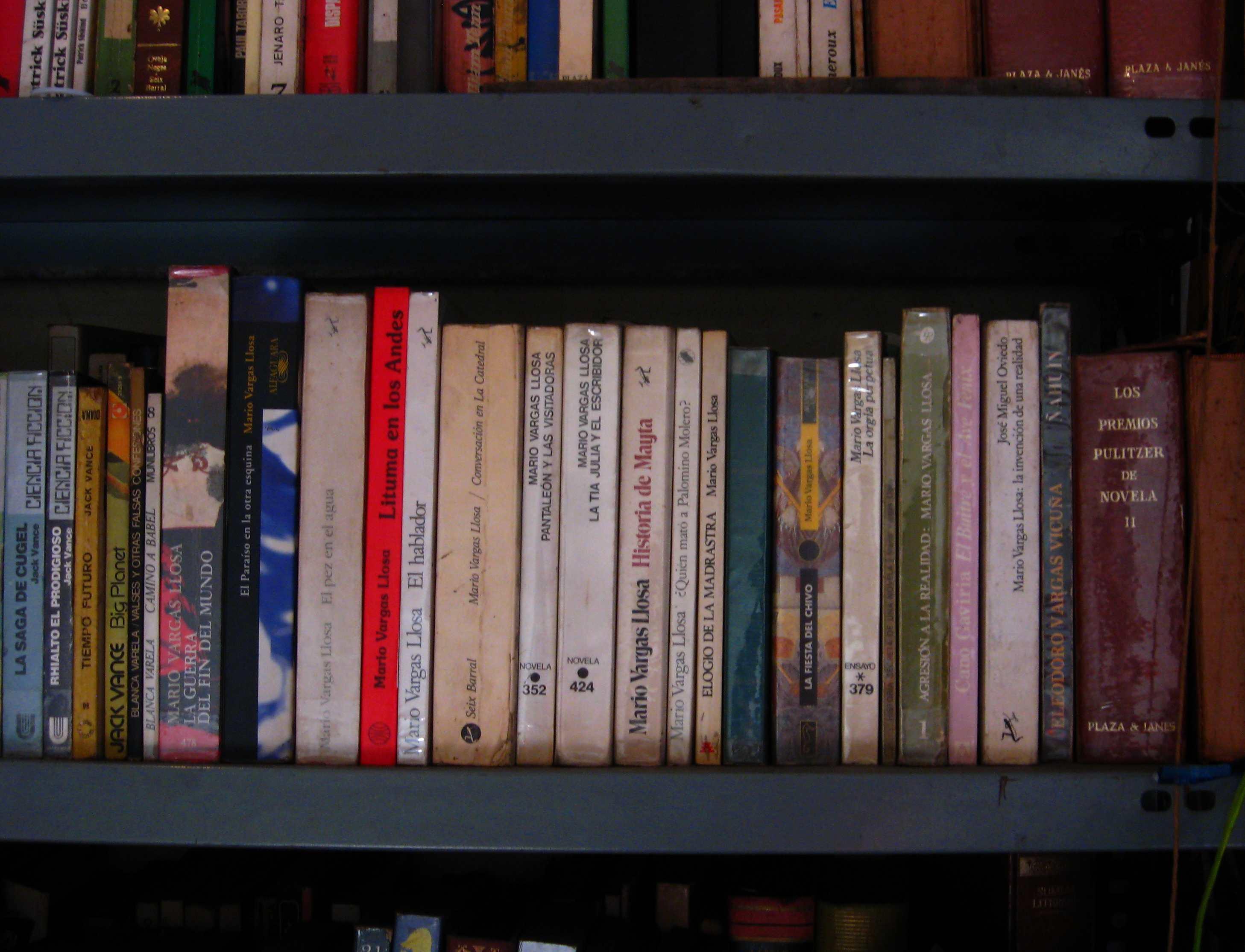 Slika lične biblioteke autora posta