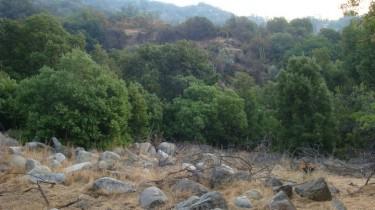 Naturaleza chilena: espacio para el retiro silente