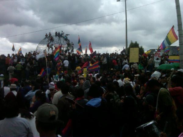 #marchavida llega al arbolito