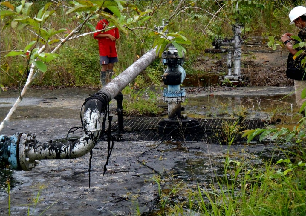 Site 1AB, San Jacinto oil reserve. Photo: courtesy of FECONACO