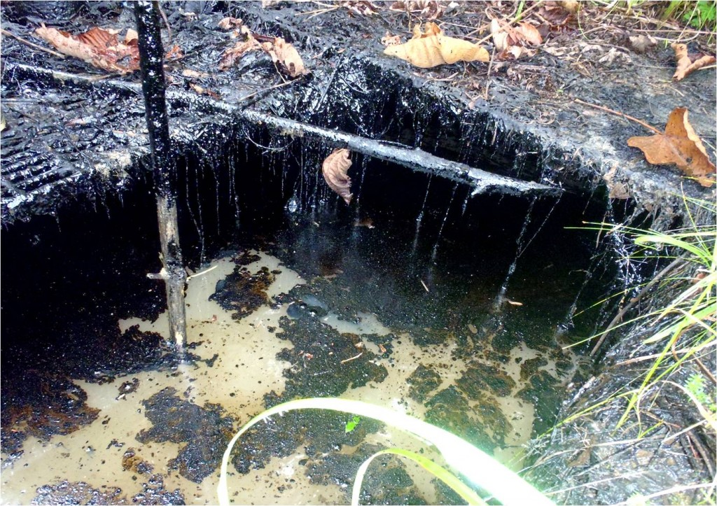 Well 6 foundation (overflows with rain), Bartra oil reserve, Tigre river valley, site 1AB. Photo: courtesy of FECONACO