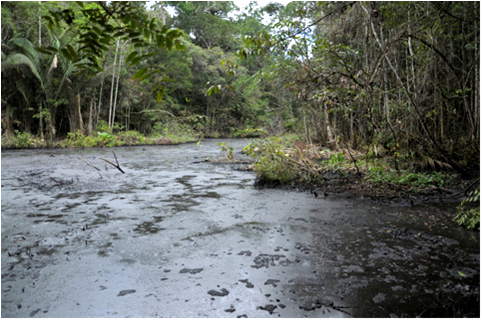 Shashococha, Capahuari Sur oil reserve, Pastaza river valley. Photo: courtesy of FECONACO