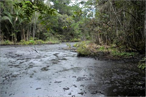 Shashococha, Capahuari Sur oil reserve, Pastaza river valley. Photo: courtesy of FECONACO