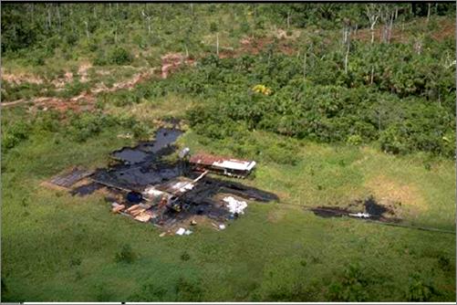 Site 8x, Pacaya Samiria National Reserve. Photo: courtesy of FECONACO