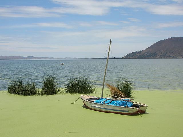 "Lago Titicaca. En primer plano la ""lenteja""."