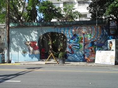 Además de tener un mural atractivo, este espacio abandonado ahora cuenta con un vivero de plantas, algo bastante inesperado cuando lo descubrí.