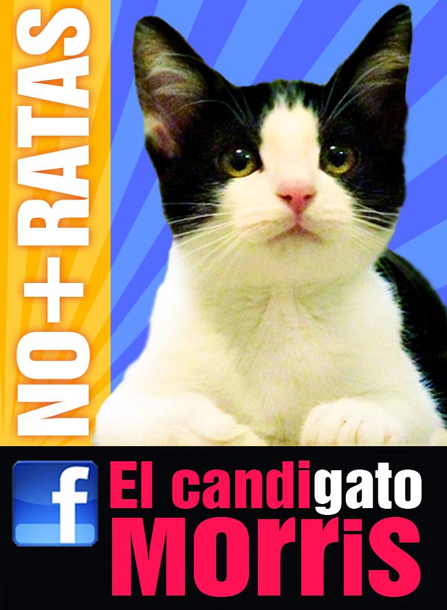 Promo de campaña, compartido en la página oficial elcandigato.com