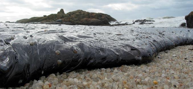 Marea negra en una playa gallega. Foto de Wikimedia Commons con licencia CC by SA 3.0