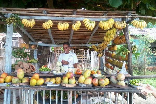 Los precios de los productos alimenticios se han incrementado durante los últimos tiempos en Cuba (Foto cortesía de la autora)
