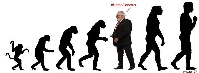 Des-evolución