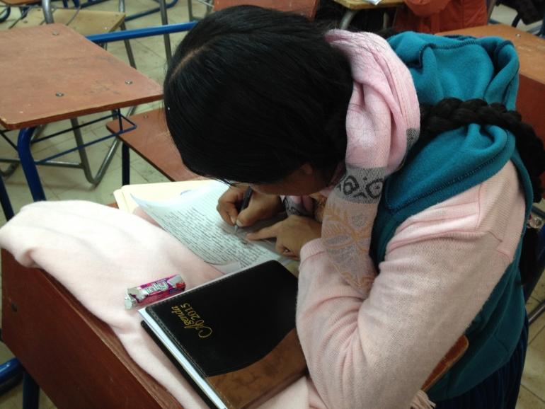 Estudiante de la Unibol. Foto - La Pública.