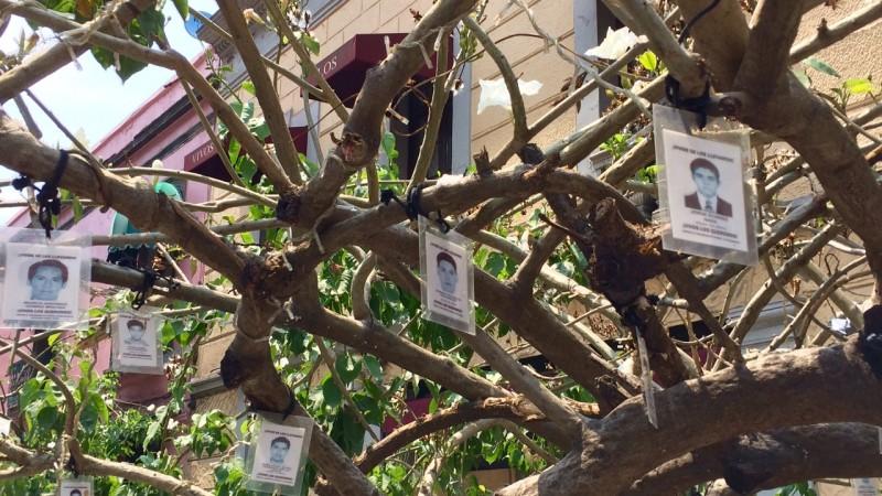 Homenaje urbano en la CDMX en el que se muestran fotos de los estudiantes desaparecidos de Ayotzinapa. Imagen del autor.