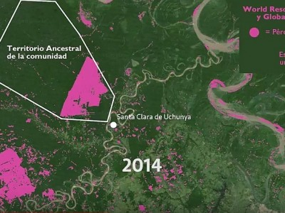 A Peruvian Amazon Community Is Putting Up a Fight Against the Expansion of Oil Palm