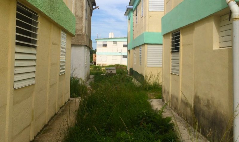 Humedad en las paredes de Indaya. Foto de Elaine Díaz. Usada con permiso.