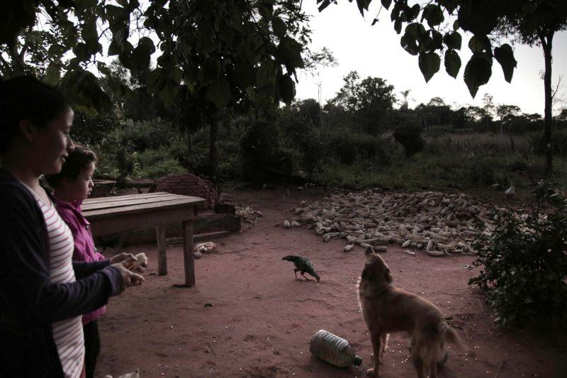 A Primero de Marzo, les activités commencent tôt et toute la famille est impliquée. Photographie de Juana Barreto. Utilisée avec l'accord de Kurtural.