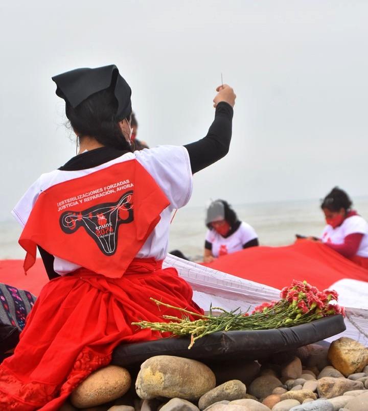 """Les manifestantes brodent leur nom sur le drapeau péruvien. Une jeune femme est vue de dos, portant un foulard rouge à l'effigie du mouvement """"somos 2074""""."""